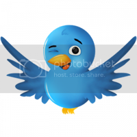 http://i483.photobucket.com/albums/rr191/vnamedia/software/twitterbirdlogo.png