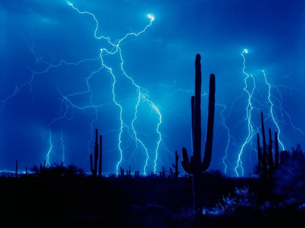 Desert Storm photo lightning-and-cactus-wallpapers_124.jpg